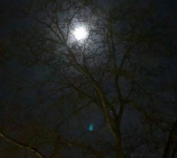Januar 2019 – Im Mondschein rechts und links